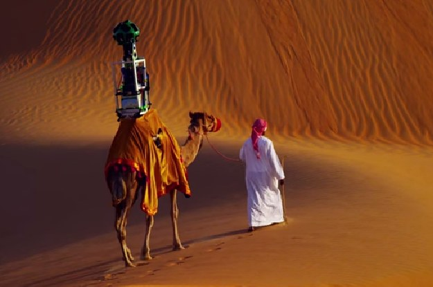 Google Put A Camera On A Camel's Back To Map The Desert