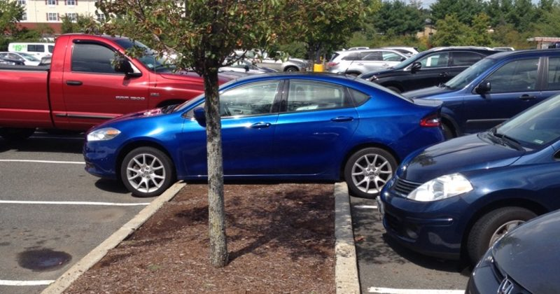 Not Everyone Can Park Perfectly, But These People Can't Park At All…Wow