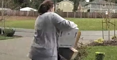 Package Thief Gets A Painful Dose Of Instant Karma, And It's All Caught On Video