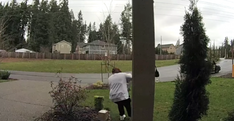 Package thief gets immediate dose of instant karma