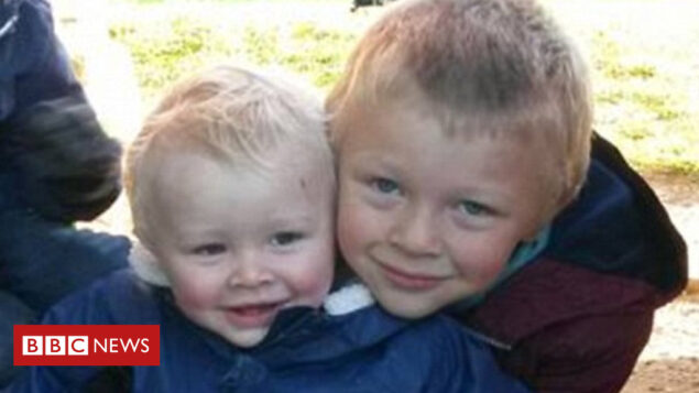 Man jailed for boys' hit-and-run deaths